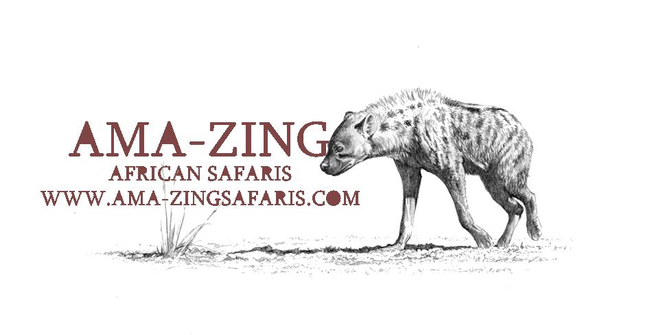 New AMA-ZING1