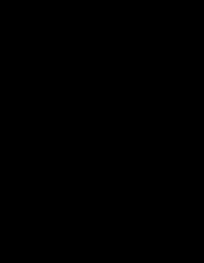 AFRICAN SHARK - BLACK LOGO
